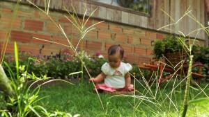 Luisa ficou tão impressionada com a grama......foram tantas novidades, tantas texturas, sons, cheiros.....ela ficou deslumbrada