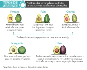 tipos-de-abacate